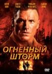 Firestorm poster6