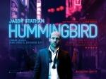Hummingbird-e3988cd3