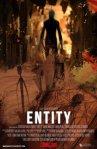 Entity_2013
