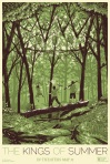 The Kings of Summer poster4