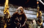 King Kong II king kong lives 1986 real : John Guillermin COLLECTION CHRISTOPHEL