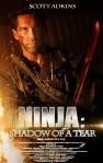 Ninja 2 poster fan made3