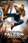 Falcon-Rising poster3