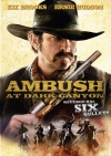 Ambush at Dark Canyon poster2
