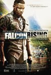 Falcon Rising poster5