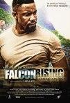 Falcon rising poster7